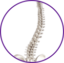 Spine Deformities